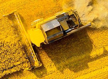 Эксперты крупнейшего российского производителя пестицидов назвали главные тренды на рынке труда